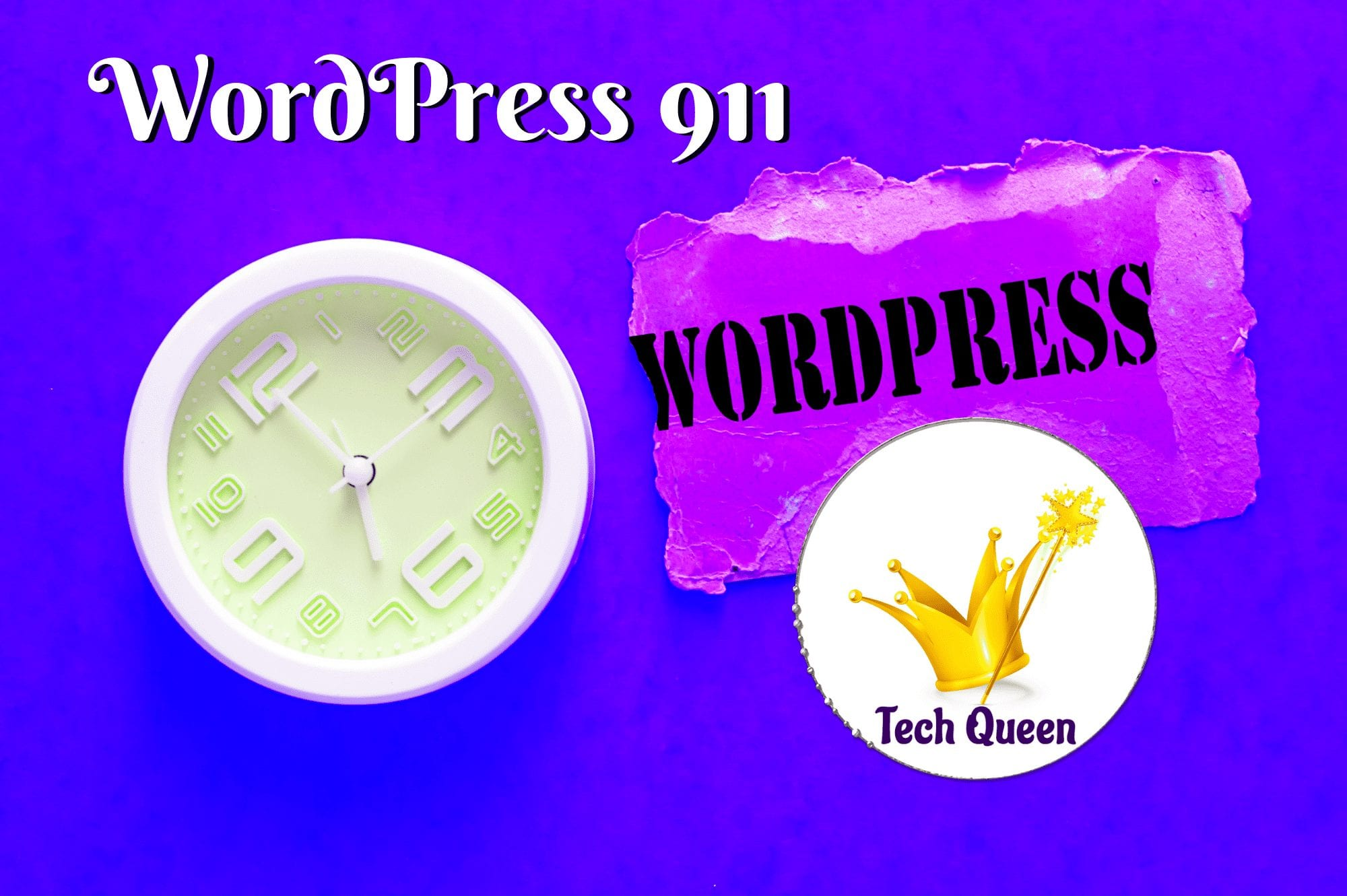 Wordpress 911 Services For People Pleasing Service Providers - Techqueen