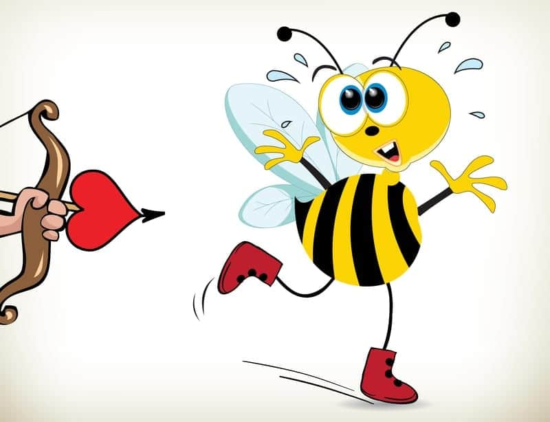Bee Scared Of Love- Darshana Hawks - Relationship Readiness