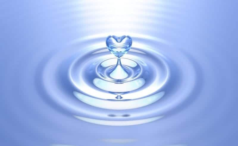 Pure Heart Water-Givers Lovers People Pleasers